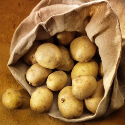 patates_1