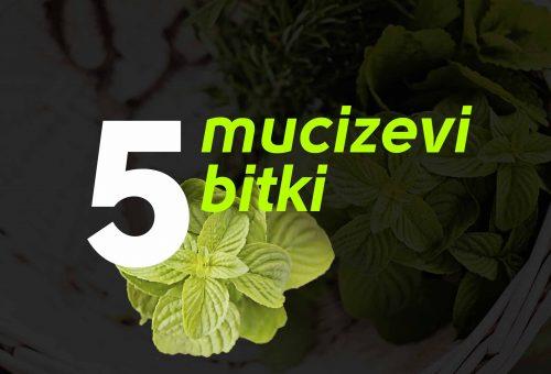 5 Mucizevi Bitki Şaşırtıyor