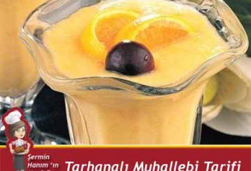 Tarhanalı Muhallebi Tarifi