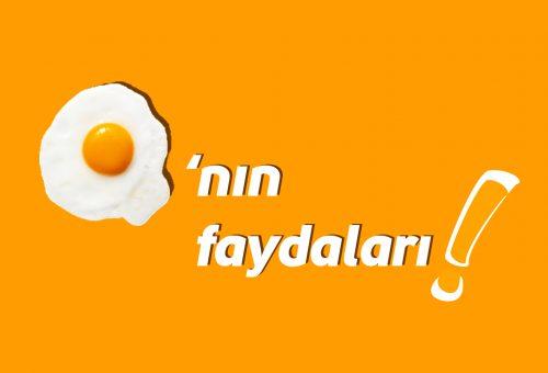 Olmazsa Olmaz Yiyecek Yumurta